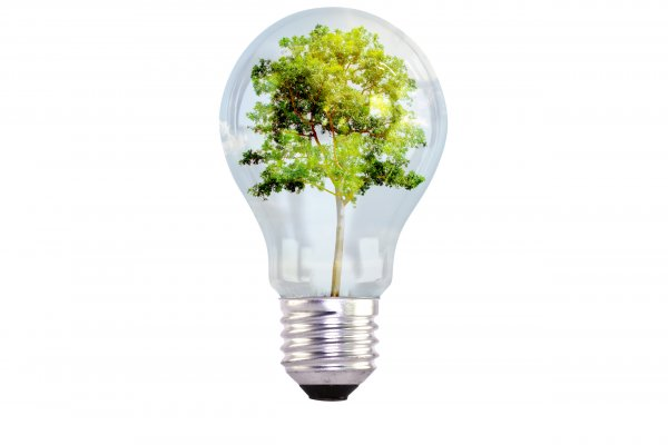 "Virtual meetings to apply for the European ""Green deal"" tender"